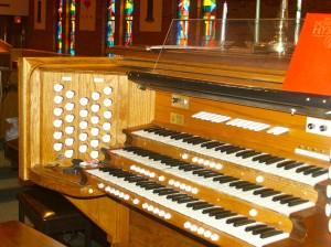 Organ Side View
